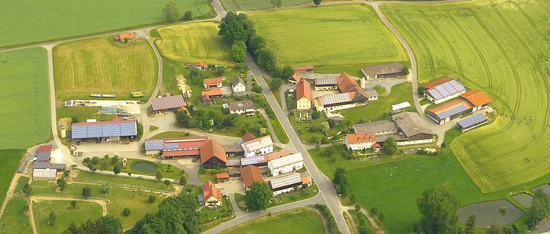 Straußenfarm Kotzenbach